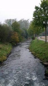 Naturschutz_12